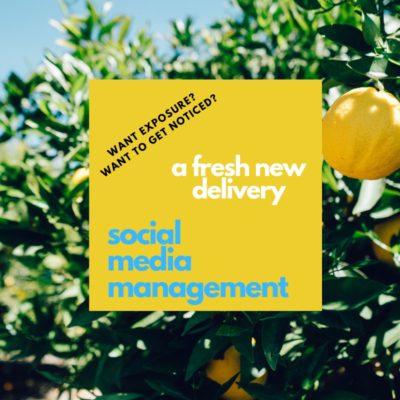 fresh social media management online exposure